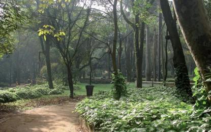 Parque Piqueri