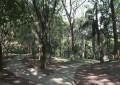 Parque São Domingos