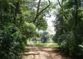 Parque Vila dos Remédios